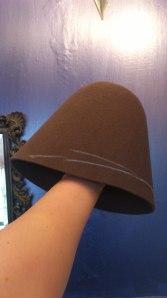 pet hat 1
